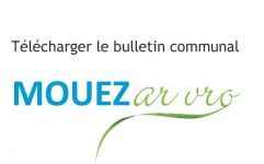 Télécharger le bulletin munici